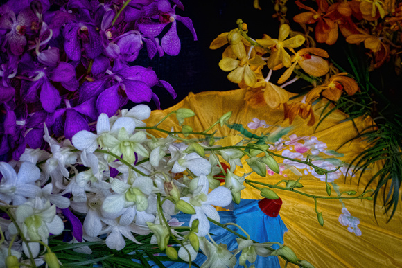 Orchids and Umbrellas