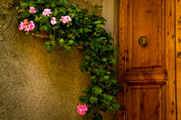 Flowers and Door
